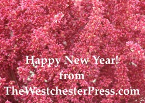 The WestchesterPress says Happy New Year