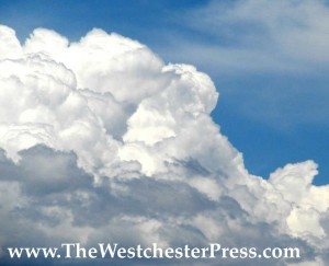 corinne tippett and the westchester press