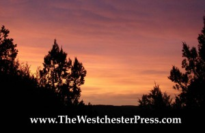 The Westchester Press and How To Self Publish A Book