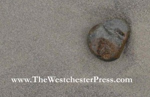 A single rock in the sand isn't such a big deal. But if the rock is a post that missed schedule, and the beach is my blog... it's not very zen.