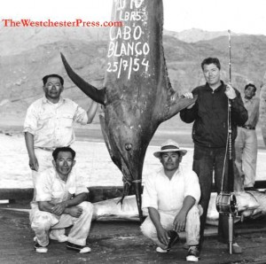 Colonel C. J. Tippett and his big, though not record-setting, and obviously not catch and release, black marlin rod and reel catch. at the Cabo Blanco Fishing Club in Peru.