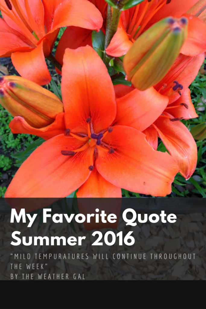 My Favorite QuoteSummer 2016